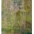 Product DIMEX DIMEX21 MS-3-0351-DIM base image