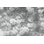 Product DIMEX DIMEX21 MS-5-0378-DIM base image